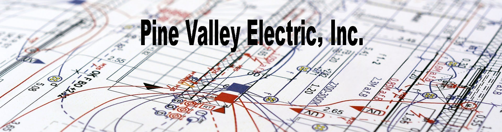 pinevalleyelectric.com